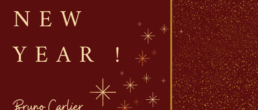 l'equioe waynium vous souhaite une bonne année
