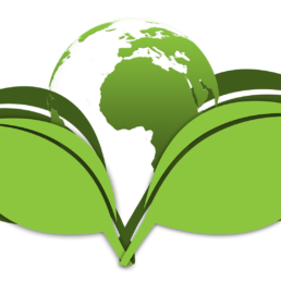 impact environnementaux du transport
